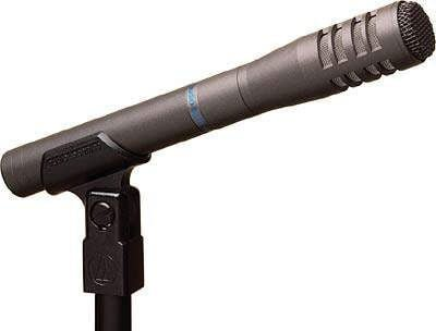 Speech/Instrument mic, stand & lead package #1